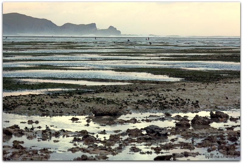 Kuta-Lombok awoddali raj dla serferów