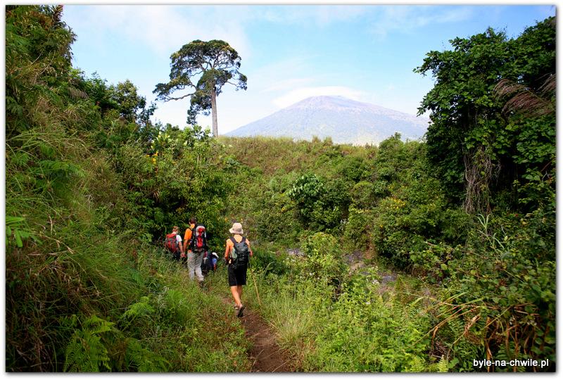 początek 9 godzinnego trekkingu doobozu noclegowego zlokalizowanego nawys. 2600 m. npm, Mt. Rinjani