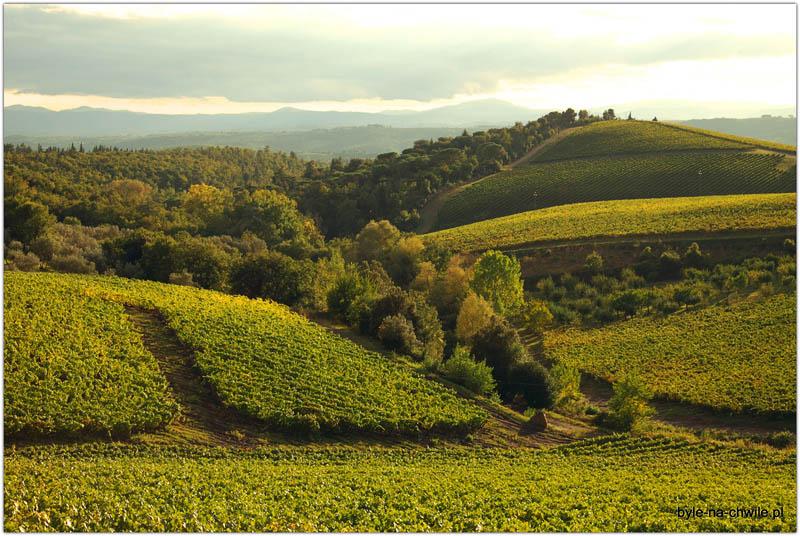 Region Chianti