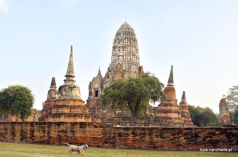 kompleks świątyń wAyutthaya