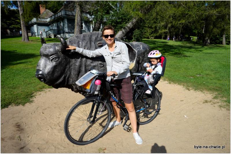 Białowieża rowerem