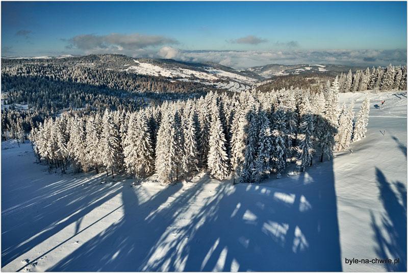 Ścieżka wKoronie drzew Słowacja