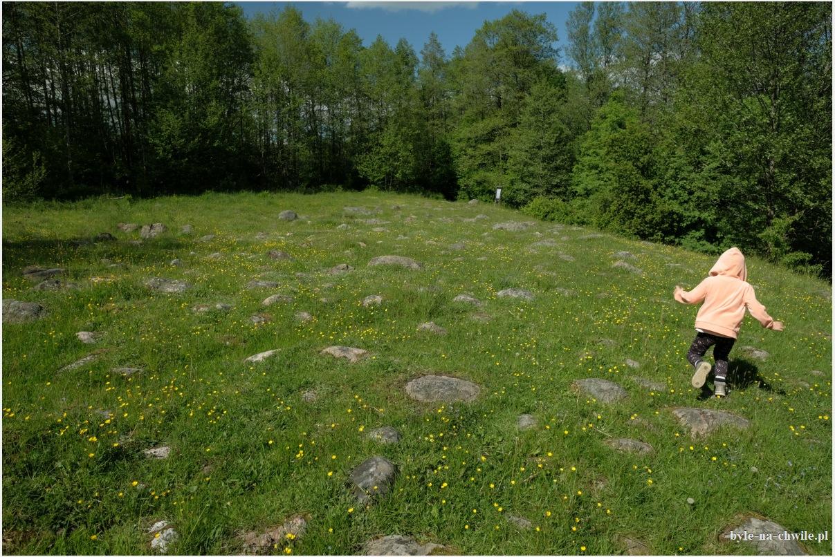 głazowisko Bachanowo Suwalski Park Krajobrazowy